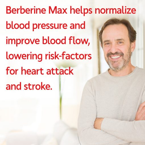 Berberine Can Bring Blood Pressure To Normal and Support Heart Health