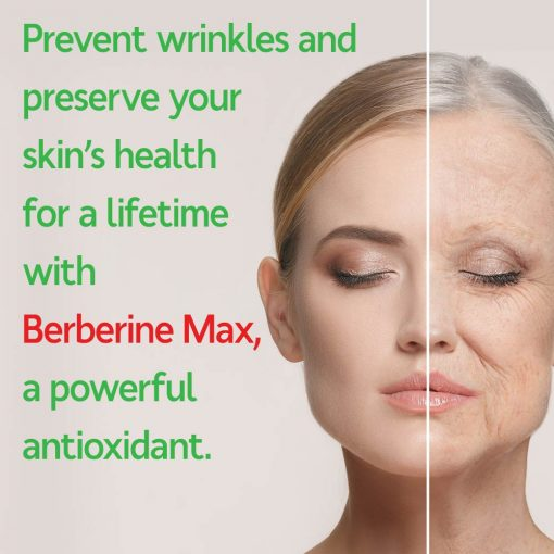 Berberine Is A Strong, Natural Antioxidant, Protecting The Skin From Aging