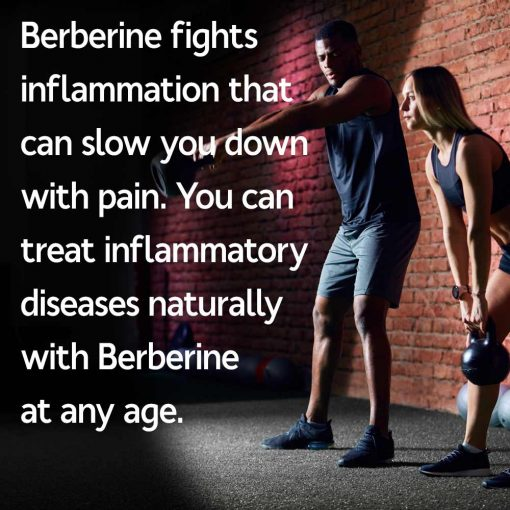 Berberine Fights Inflammation Naturally