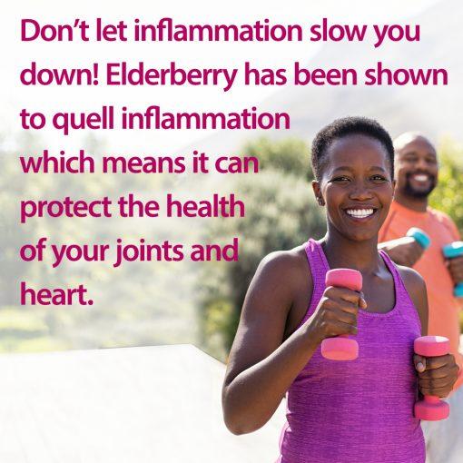 Elderberry Gummies Descriptive Image - Elderberry Offers Anti-Inflammatory Benefits